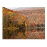 Paisaje del otoño con el lago, Vermont, los E.E.U. Postal