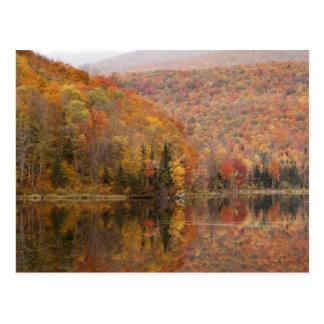 Paisaje del otoño con el lago, Vermont, los Postales
