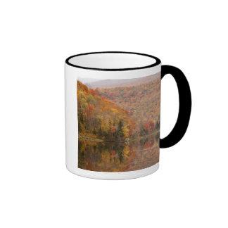 Paisaje del otoño con el lago, Vermont, los Taza De Dos Colores