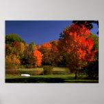 Paisaje del otoño, Nueva Inglaterra Impresiones
