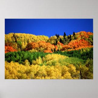 Paisaje del otoño póster