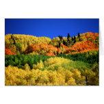 Paisaje del otoño tarjeton