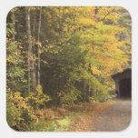 Paisaje del otoño, Vermont, los E.E.U.U. 4 Pegatina Cuadrada