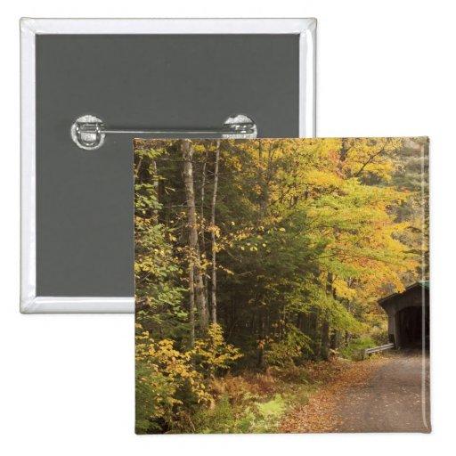 Paisaje del otoño, Vermont, los E.E.U.U. 4 Pin Cuadrado