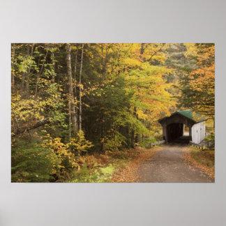 Paisaje del otoño, Vermont, los E.E.U.U. 4 Póster