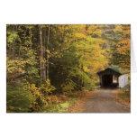Paisaje del otoño, Vermont, los E.E.U.U. 4 Tarjeta De Felicitación