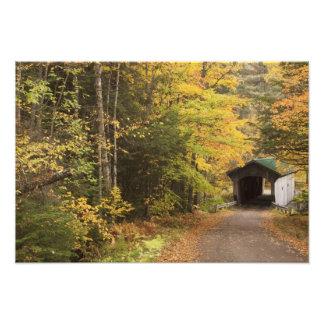 Paisaje del otoño, Vermont, los E.E.U.U. Fotografía