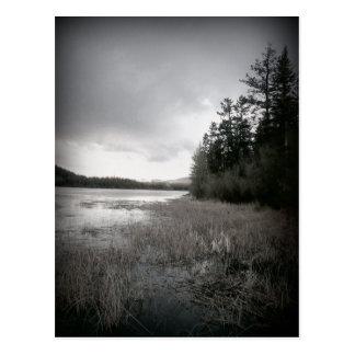 Paisaje del pantano del lago de B W Postales