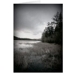 Paisaje del pantano del lago de B W Tarjeta