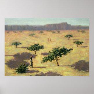 Paisaje del Sahel Malí 1991 Póster