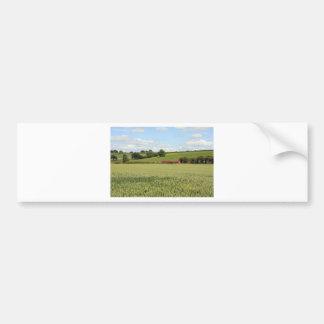 paisaje del verano etiqueta de parachoque