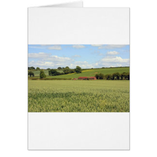 paisaje del verano tarjeta
