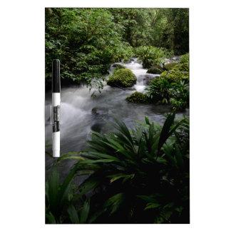 Paisaje el Amazonas del río de la corriente de la