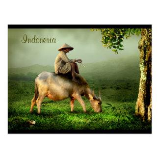 Paisaje escénico de Indonesia con el búfalo y el Postales