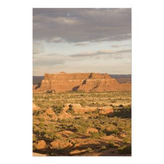 Paisaje escénico del desierto del invierno en la m cojinete