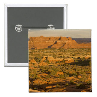 Paisaje escénico del desierto del invierno en la m pin cuadrada 5 cm