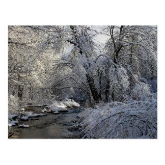 Paisaje escénico del invierno postales
