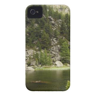 Paisaje fantástico Austia 11 Case-Mate iPhone 4 Cárcasa