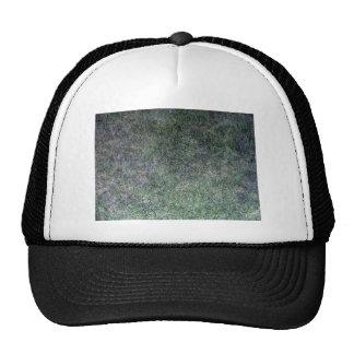 Paisaje fresco de la hierba verde gorro