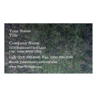 Paisaje fresco de la hierba verde tarjeta de visita