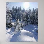 Paisaje frío 2 del invierno Nevado Poster