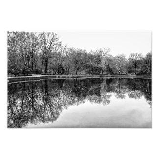Paisaje hermoso del Central Park en negro y blanco Fotografías