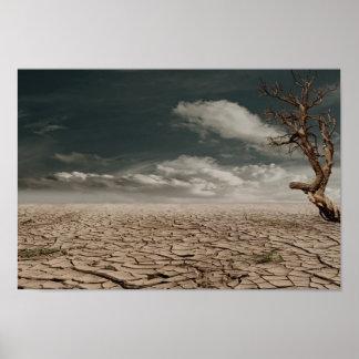 Paisaje hermoso del desierto de la sequía póster