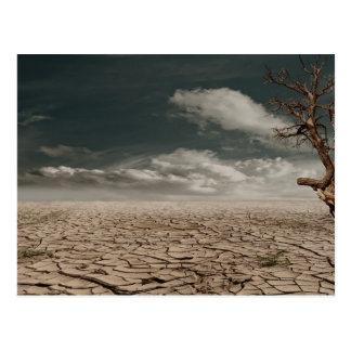 Paisaje hermoso del desierto de la sequía tarjeta postal