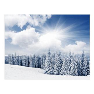 Paisaje hermoso del invierno con nieve tarjetas postales