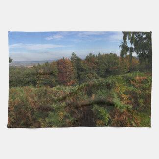Paisaje inglés panorámico del bosque en otoño toallas de cocina