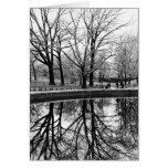 Paisaje magnífico del invierno en Central Park Tarjeta Pequeña