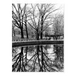Paisaje magnífico del invierno en Central Park Tarjetas Postales