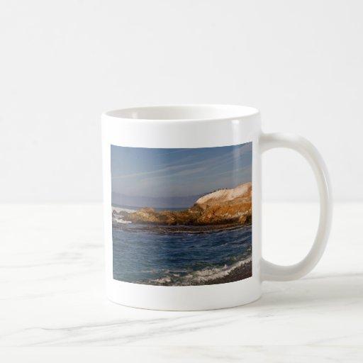 Paisaje marino californiano taza