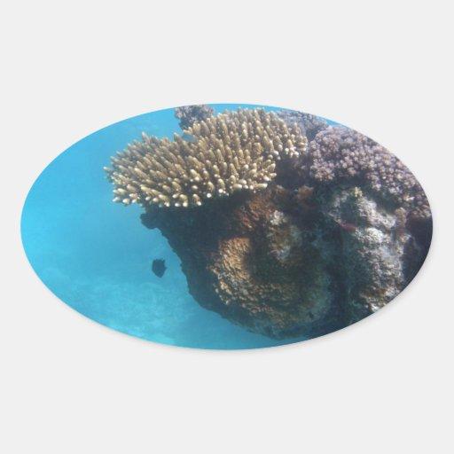 Paisaje marino coralino pegatina ovalada
