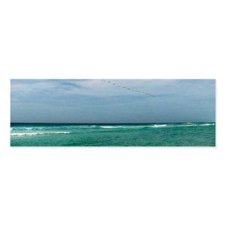 Paisaje marino y cielo tarjetas de visita mini