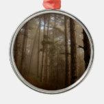 Paisaje natural de los árboles forestales ornamentos para reyes magos