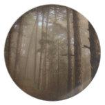 Paisaje natural de los árboles forestales plato de comida