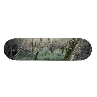 Paisaje naturaleza y alcornoques en Doñana, España Skate Board