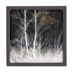 Paisaje negro y blanco del flujo de pensamiento caja de recuerdo de calidad