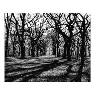 Paisaje negro y blanco en Central Park Cojinete