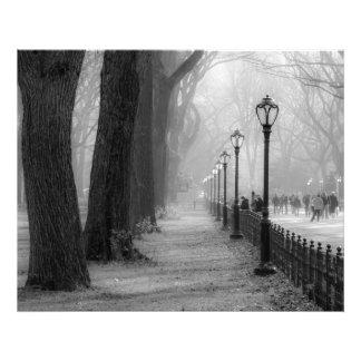 Paisaje negro y blanco en Central Park Fotografía