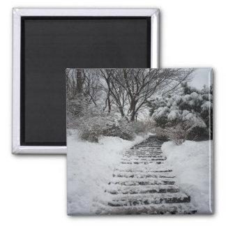 Paisaje nevado del Central Park NYC Imán Cuadrado