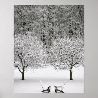 Paisaje nevado posters
