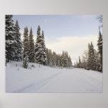 Paisaje nevado póster