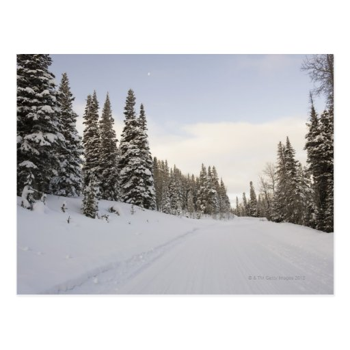 Paisaje nevado tarjetas postales