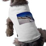 Paisaje Nevado y cielos azules Ropa De Perro