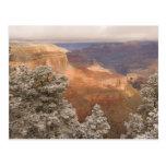 Paisaje nevoso escénico del invierno a lo largo postal