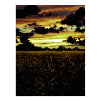 Paisaje oscuro del prado tarjeta postal