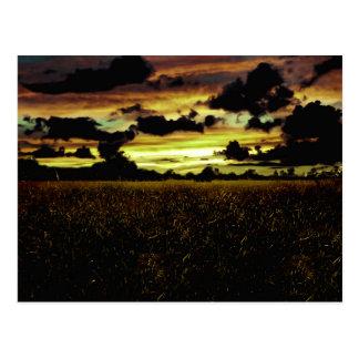 Paisaje oscuro del prado tarjetas postales