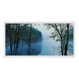 Paisaje panorámico del bosque y del río impresiones
